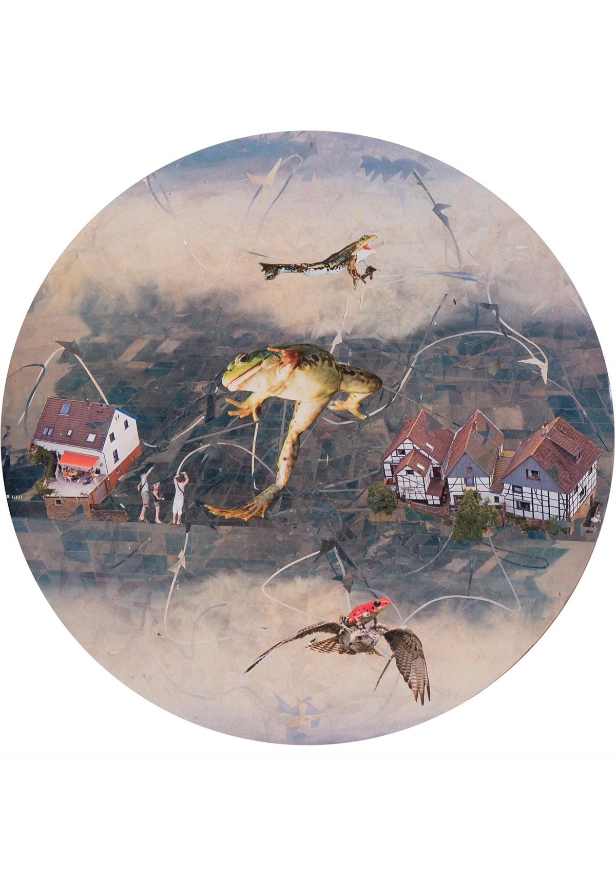 MoresRabenstern-Fliegende-Froesche-gross