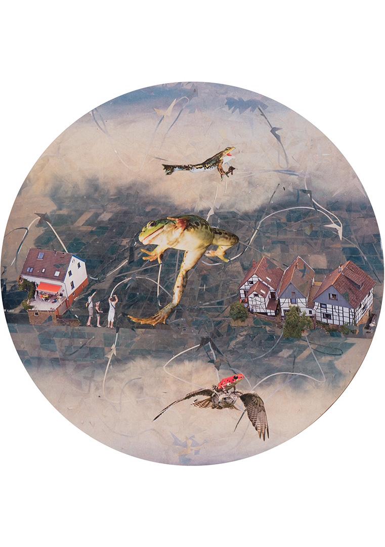 MoresRabenstern-Fliegende-Froesche-klein